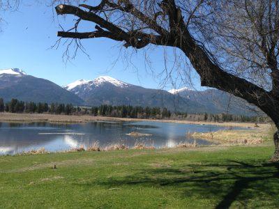 Round Up 2014 Missoula, Montana
