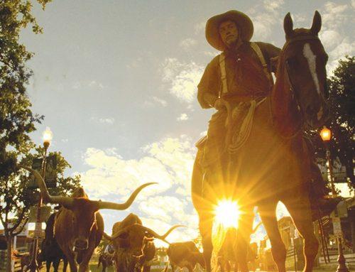 Texas viert cowboycultuur met jubileum beroemde veeroute