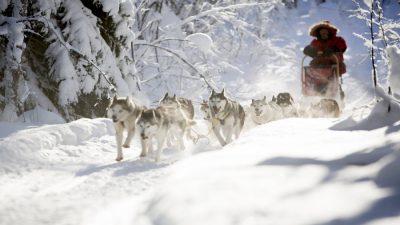 WeFlyCheap signaleert verschuiving reiswensen in de koude maanden