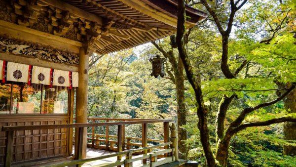 Camper reizen Japan